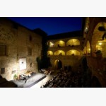 <p>Castle of Magione at concert time</p><br/>