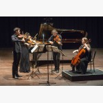 <p>The Australian String Quartet plays Haydn in Perugia</p><br>