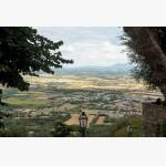 <p>3 July, Cortona</p><br>