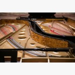 <p>29 June, Assisi – The two Fazioli concert grand pianos!</p><br>