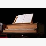 <p>2 July, Cortona – Teatro Signorelli: the harpsichord</p><br/>